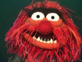 animal muppets bohemian rhapsody queen